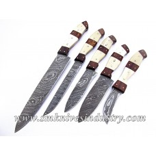 5 Pieces Kitchen Hand Made Damascus Knives Set (Smk1002)